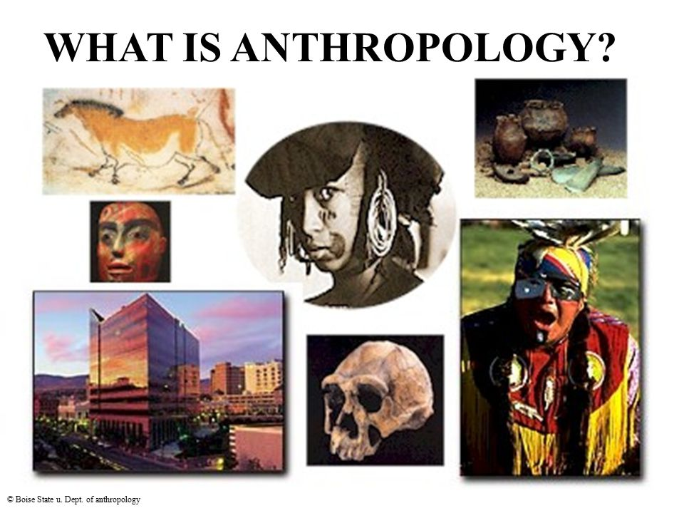 WHAT IS ANTHROPOLOGY © Boise State u. Dept. of anthropology