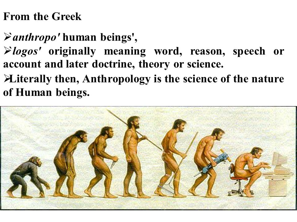 From the Greek `anthropo human beings , `logos originally meaning word, reason, speech or account and later doctrine, theory or science.