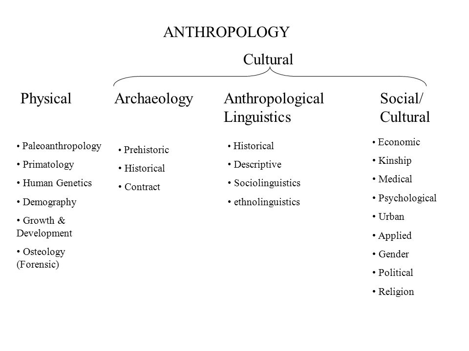 Anthropological Linguistics Social/ Cultural