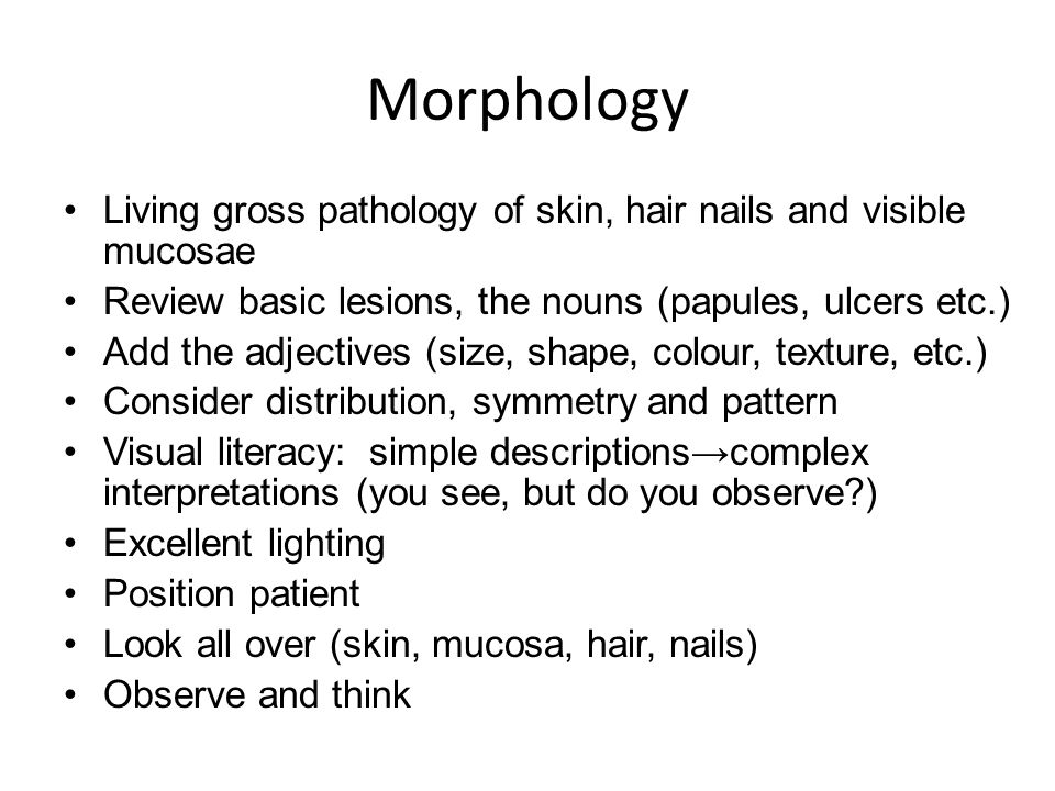 Morphology Living gross pathology of skin, hair nails and visible mucosae. Review basic lesions, the nouns (papules, ulcers etc.)