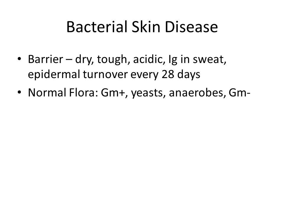 Bacterial Skin Disease