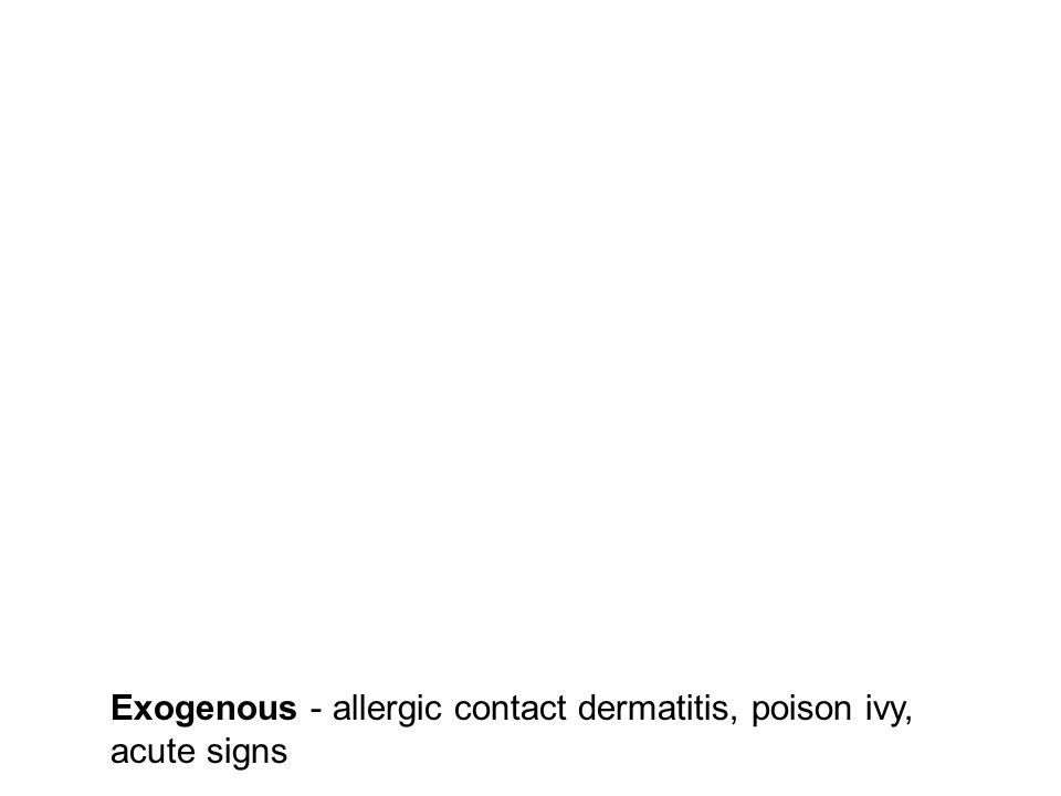 Exogenous - allergic contact dermatitis, poison ivy, acute signs