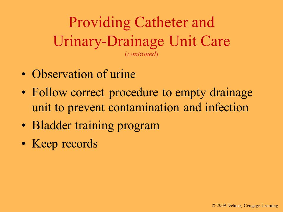 Providing Catheter and Urinary-Drainage Unit Care (continued)