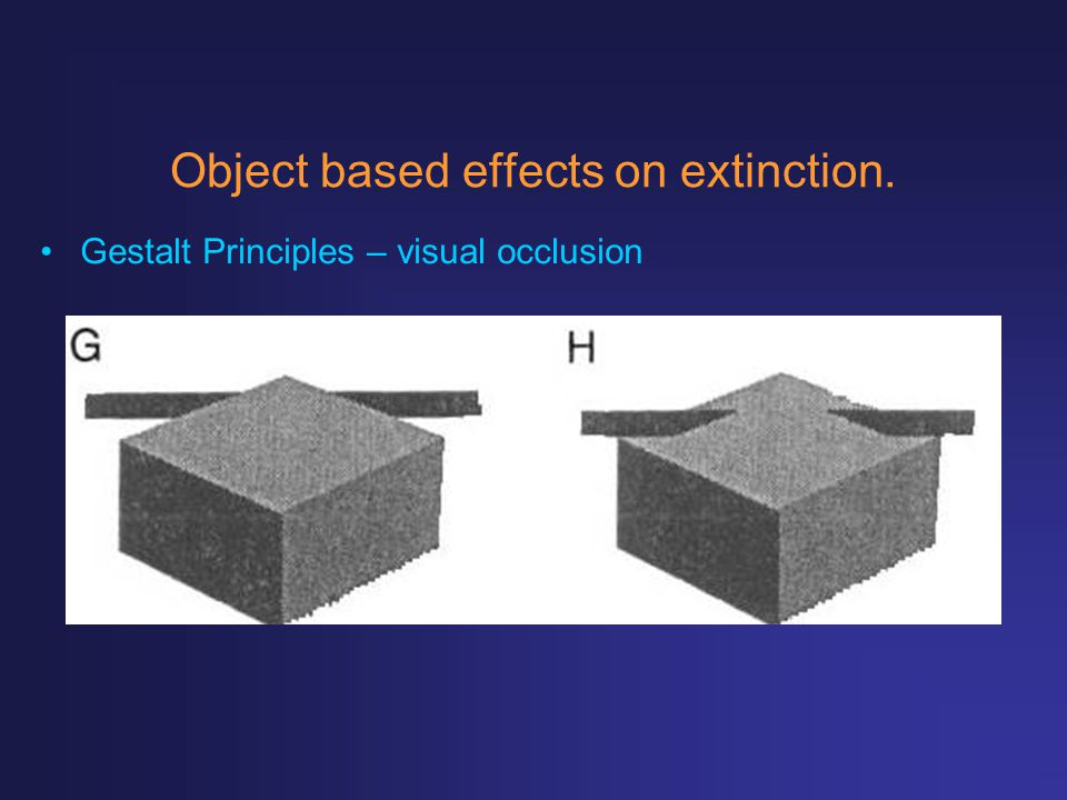 Object based effects on extinction.