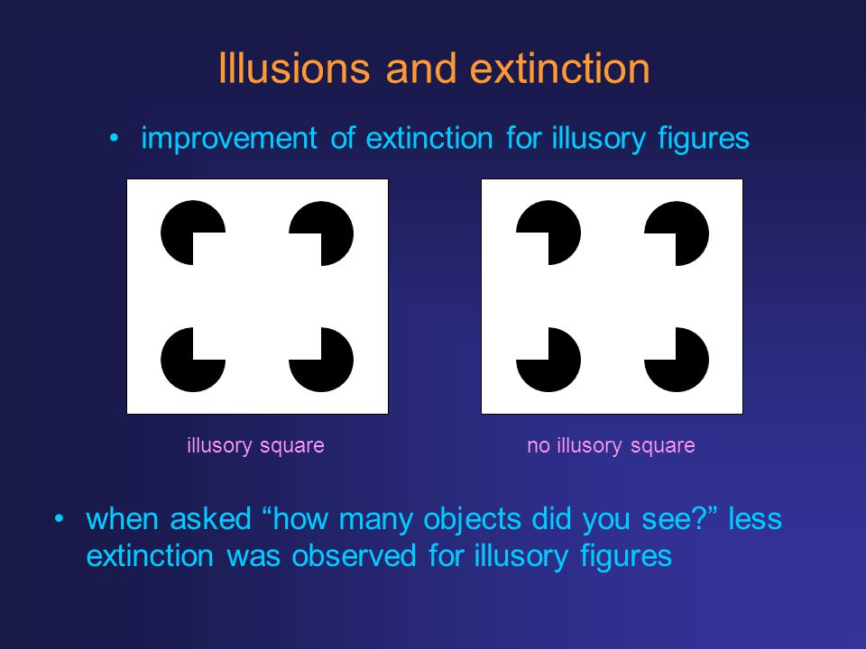 Illusions and extinction