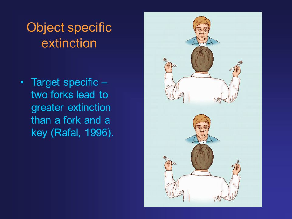 Object specific extinction