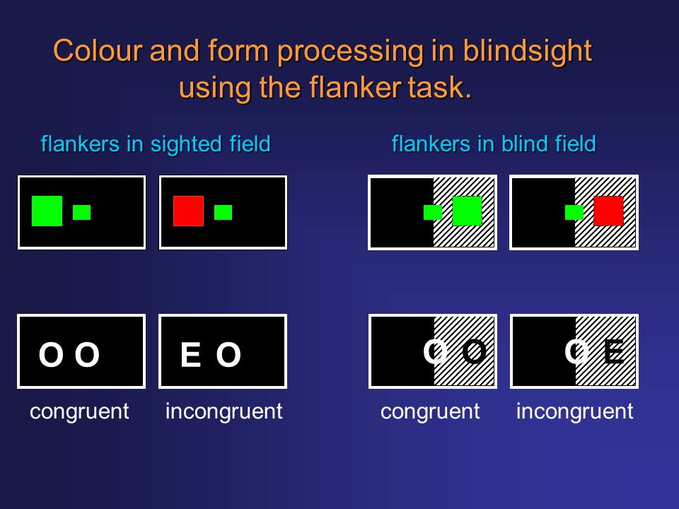 Colour and form processing in blindsight