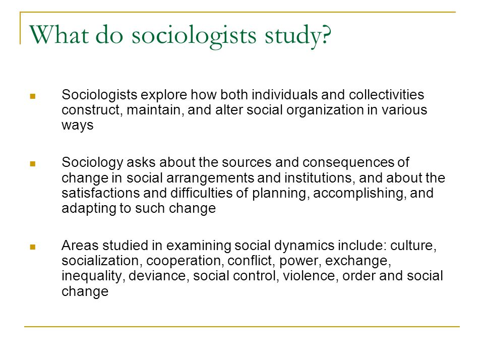 What do sociologists study