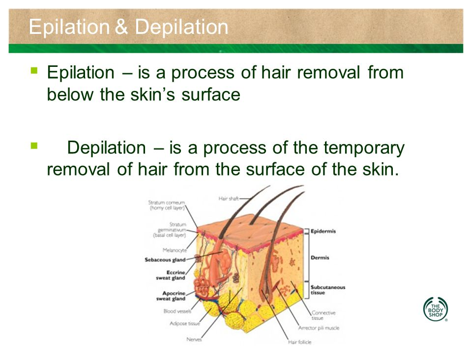 Epilation & Depilation