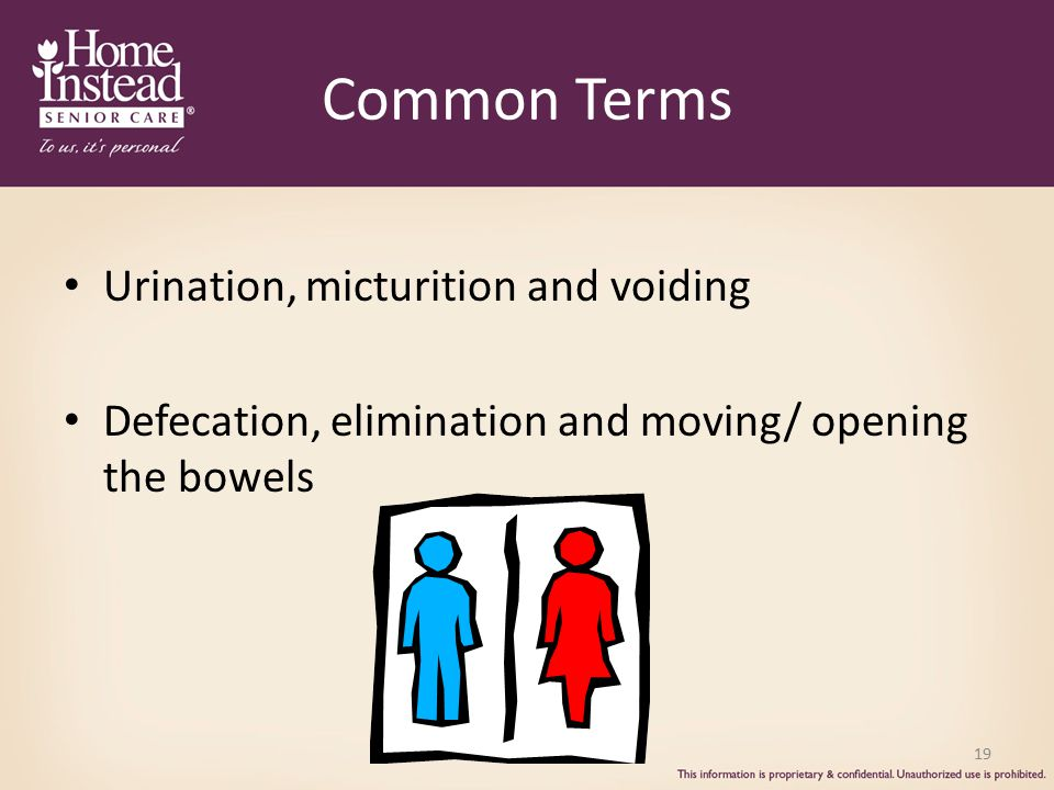 Common Terms Urination, micturition and voiding