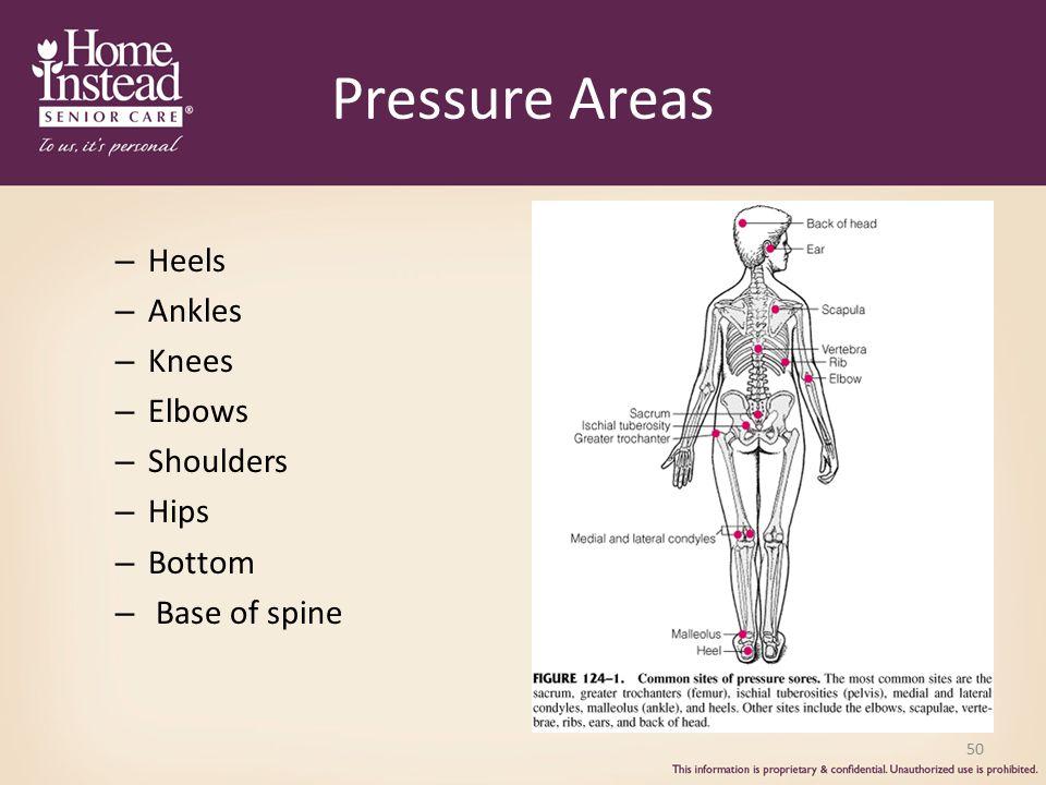 Pressure Areas Heels Ankles Knees Elbows Shoulders Hips Bottom