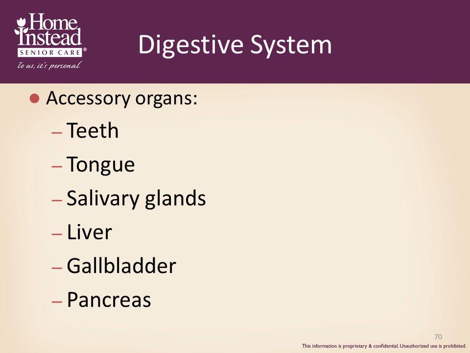 Digestive System Teeth Tongue Salivary glands Liver Gallbladder
