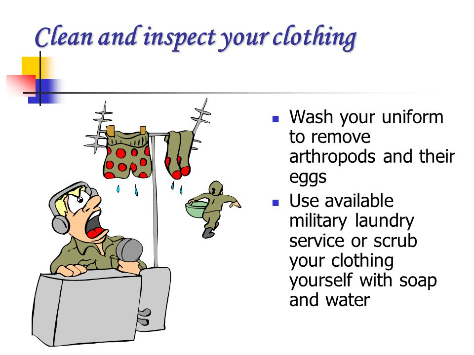 Clean and inspect your clothing