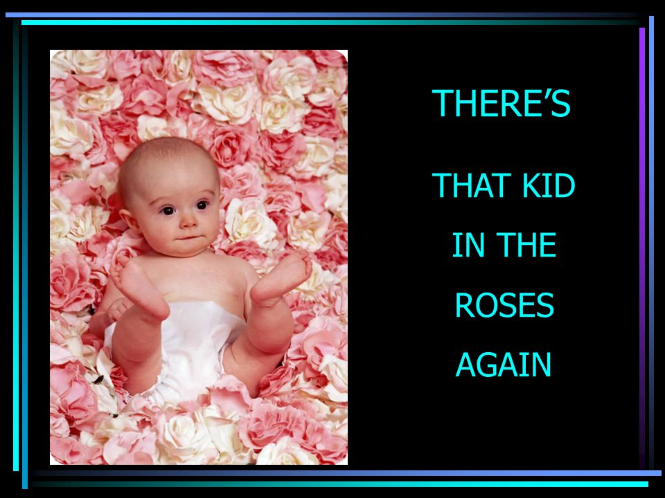 THERE'S THAT KID IN THE ROSES AGAIN