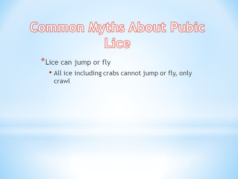 Common Myths About Pubic Lice