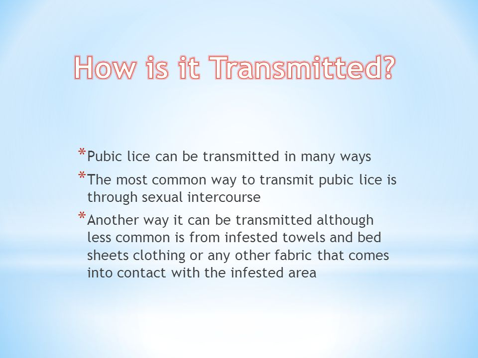 How is it Transmitted Pubic lice can be transmitted in many ways