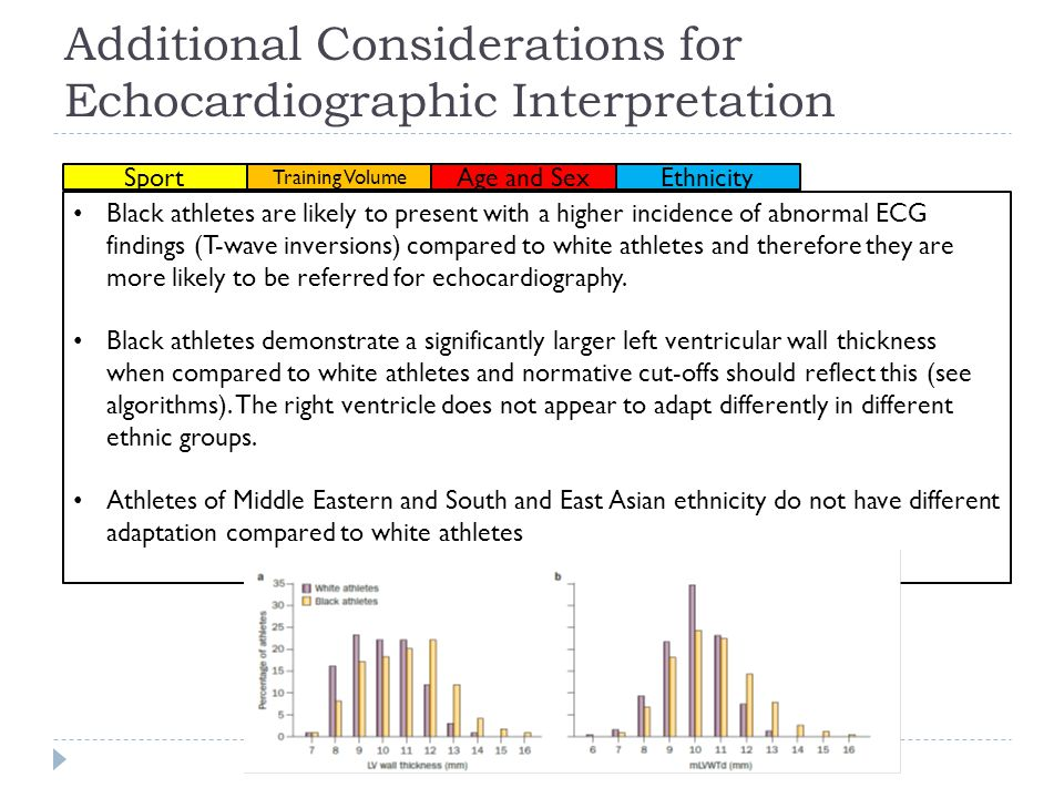 Additional Considerations for Echocardiographic Interpretation