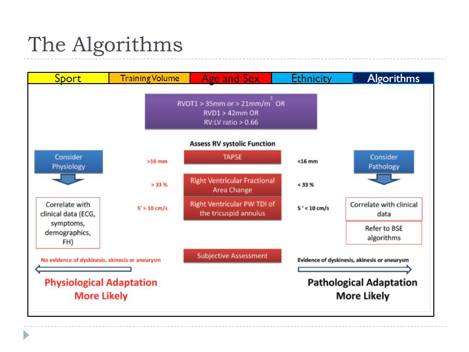 The Algorithms Sport Ethnicity Training Volume Age and Sex Algorithms