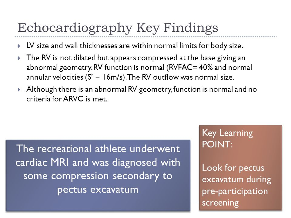 Echocardiography Key Findings