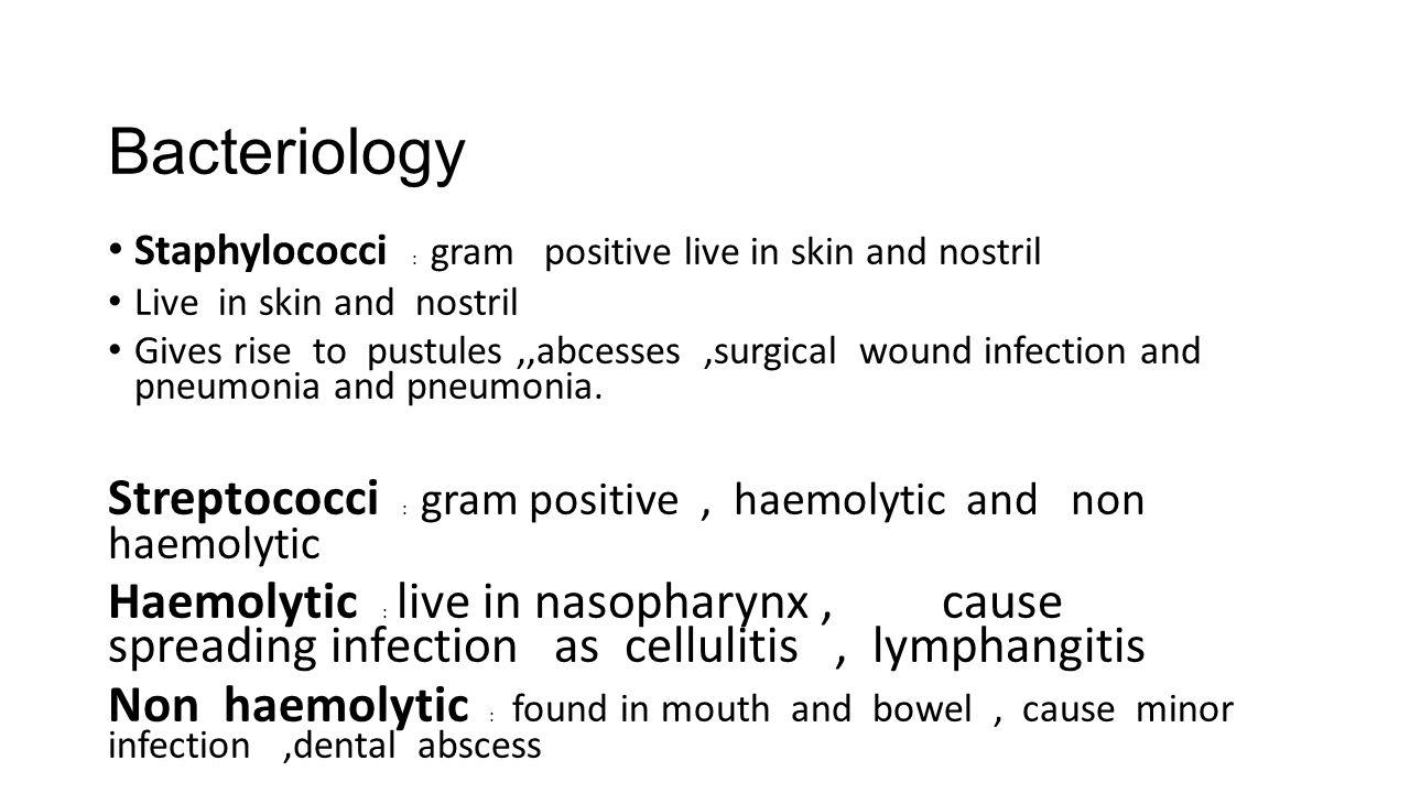 Bacteriology Staphylococci : gram positive live in skin and nostril. Live in skin and nostril.