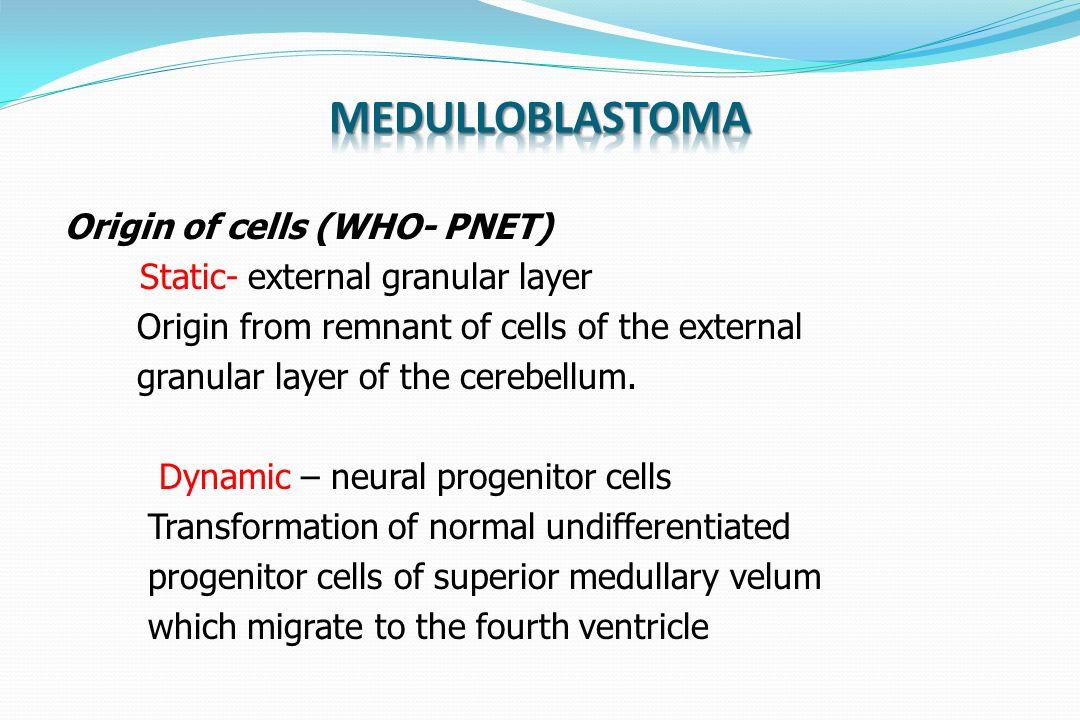 Medulloblastoma Origin of cells (WHO- PNET)