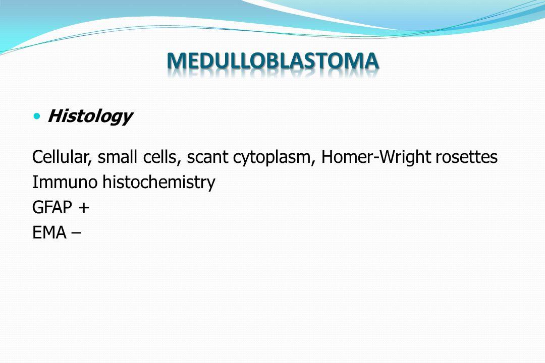 Medulloblastoma Histology