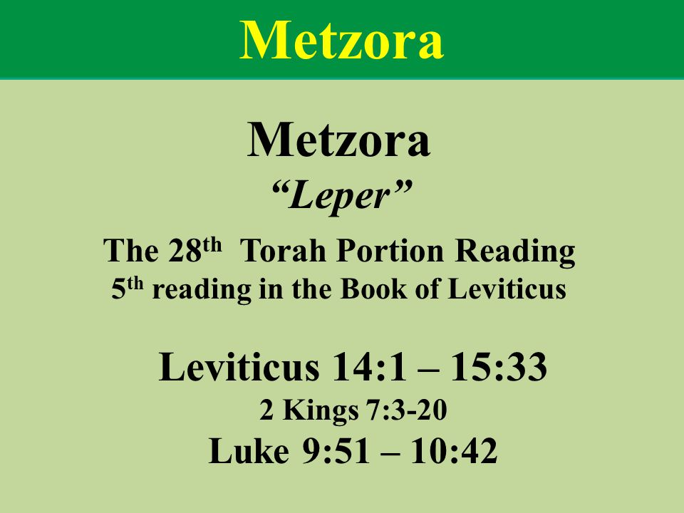The 28th Torah Portion Reading 5th reading in the Book of Leviticus