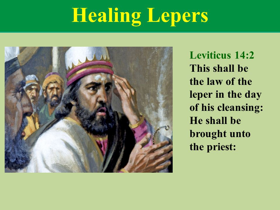 Healing Lepers Leviticus 14:2 This shall be the law of the leper in the day of his cleansing: He shall be brought unto the priest: