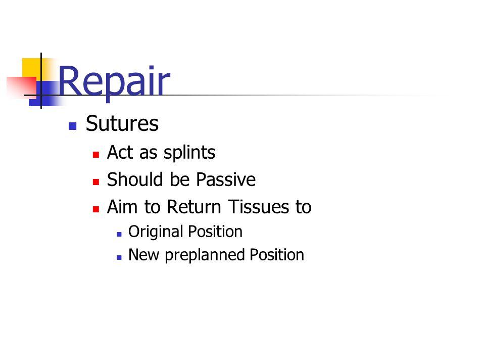 Repair Sutures Act as splints Should be Passive