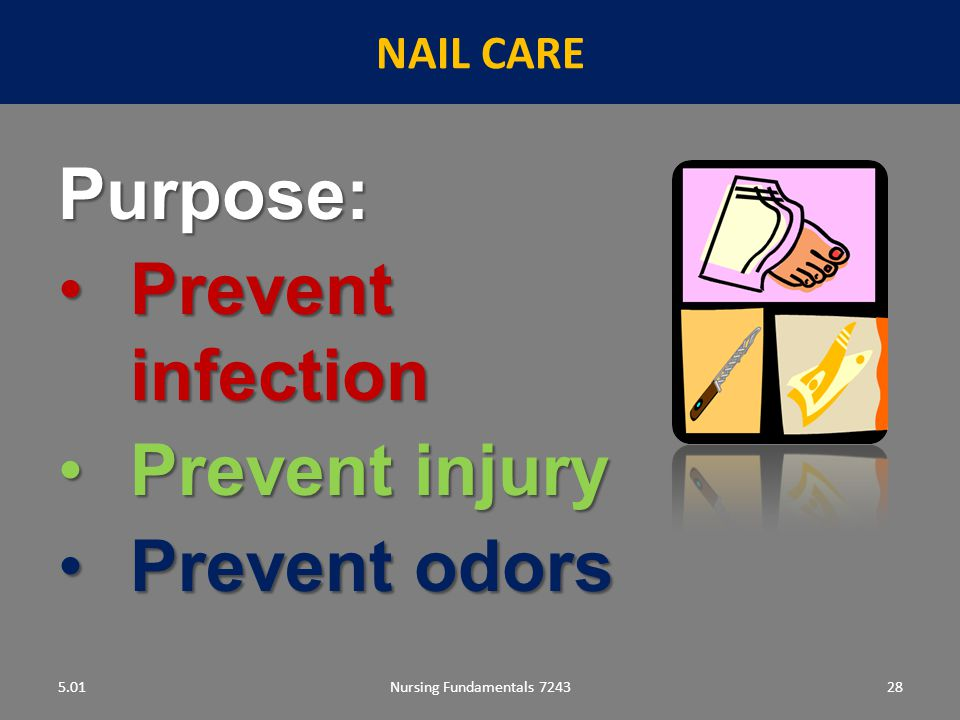 Purpose: Prevent infection Prevent injury Prevent odors NAIL CARE 5.01
