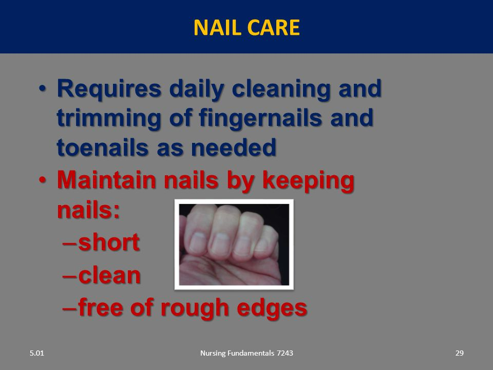 Maintain nails by keeping nails: short clean free of rough edges