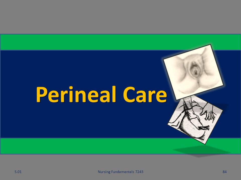 5.01 Perineal Care 5.01 Nursing Fundamentals 7243 Hygiene and Grooming