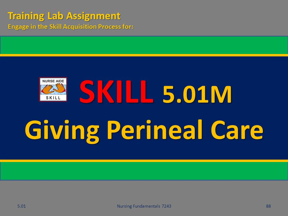 SKILL 5.01M Giving Perineal Care Training Lab Assignment