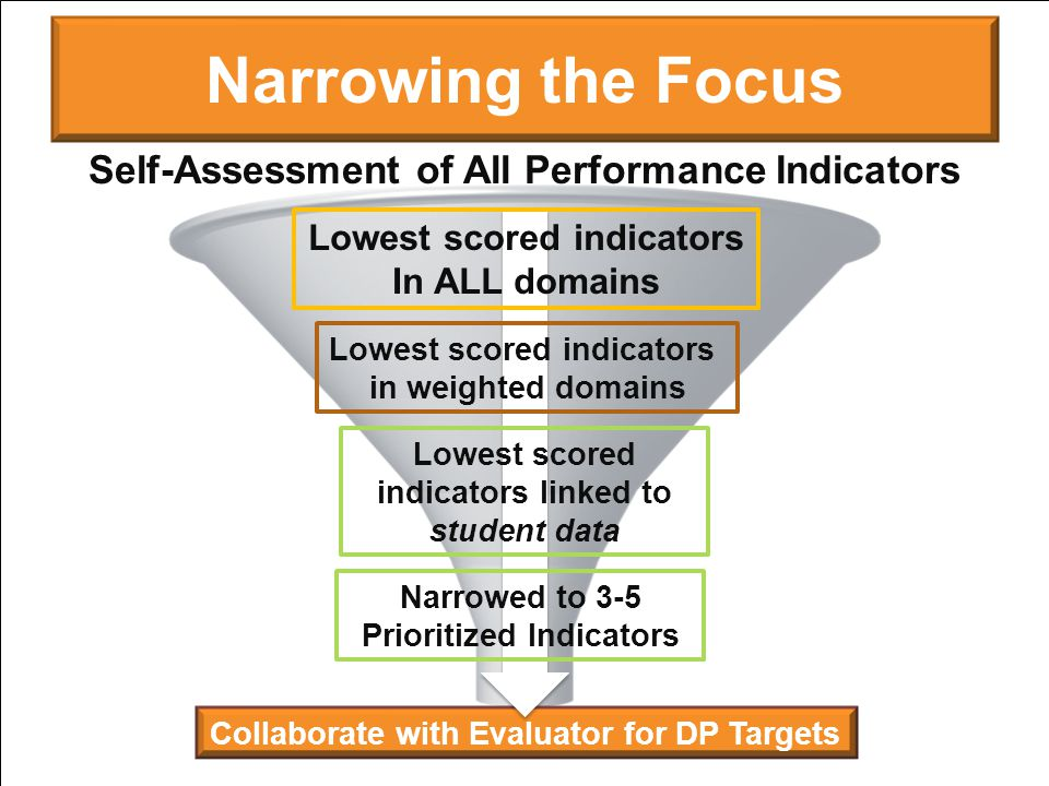 Narrowing the Focus Self-Assessment of All Performance Indicators