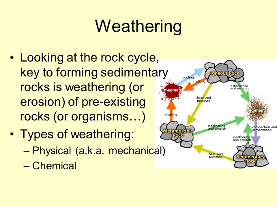 Weathering Looking at the rock cycle, key to forming sedimentary rocks is weathering (or erosion) of pre-existing rocks (or organisms…)