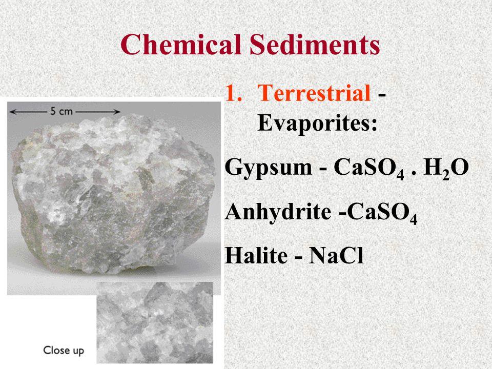 Chemical Sediments Terrestrial - Evaporites: Gypsum - CaSO4 . H2O
