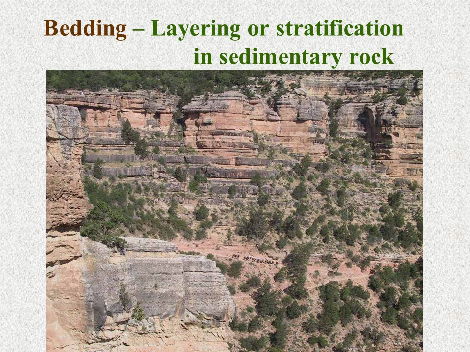 Bedding – Layering or stratification in sedimentary rock