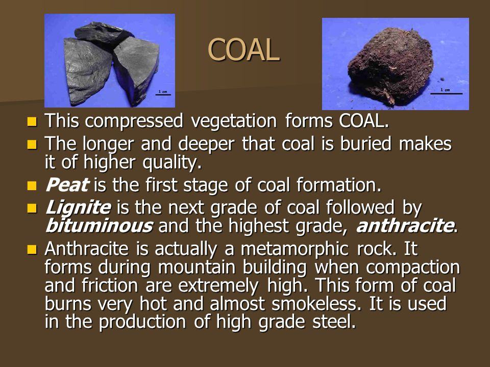 COAL This compressed vegetation forms COAL.