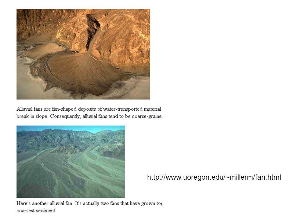 http://www.uoregon.edu/~millerm/fan.html