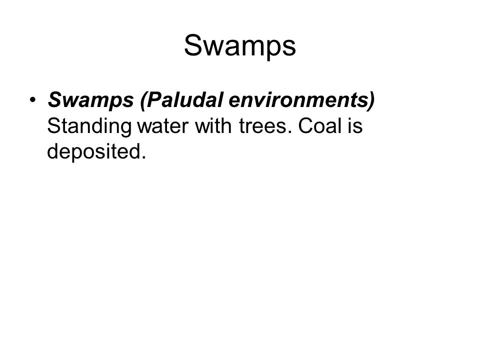 Swamps Swamps (Paludal environments) Standing water with trees. Coal is deposited.