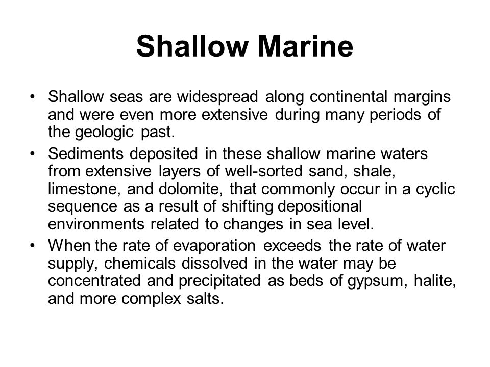 Shallow Marine Shallow seas are widespread along continental margins and were even more extensive during many periods of the geologic past.