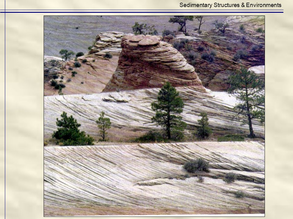 Sedimentary Structures & Environments
