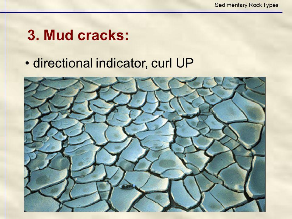 Sedimentary Rock Types
