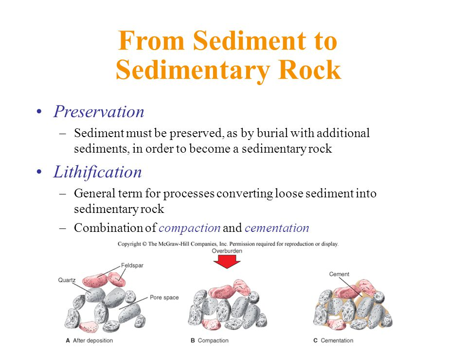 From Sediment to Sedimentary Rock