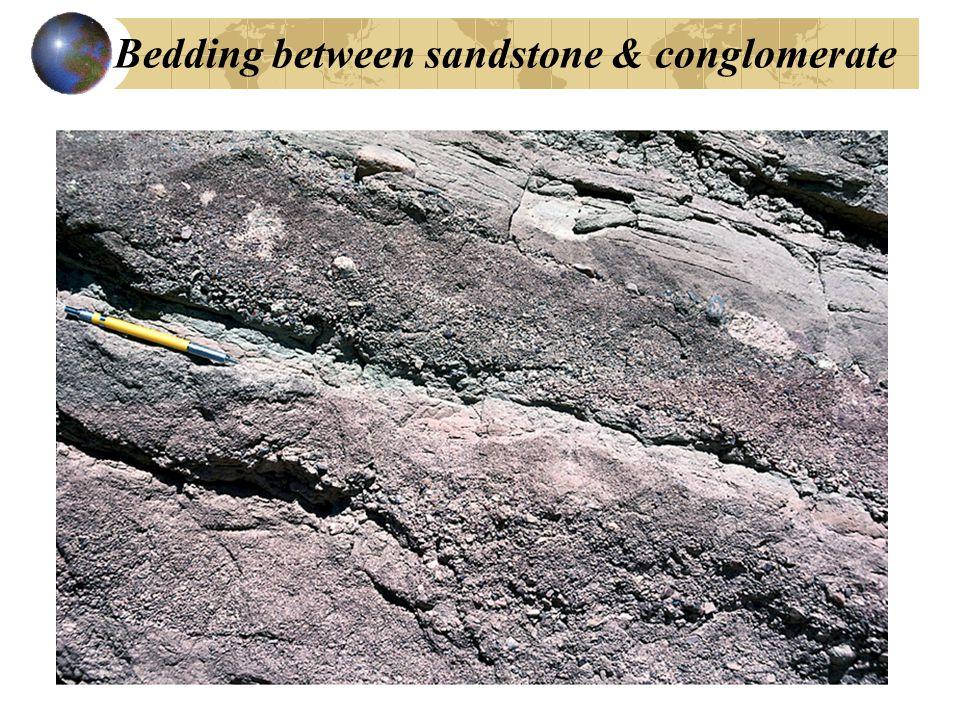 Bedding between sandstone & conglomerate
