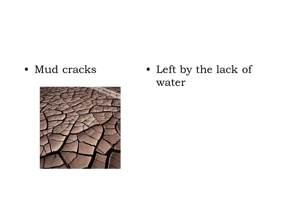 Mud cracks Left by the lack of water