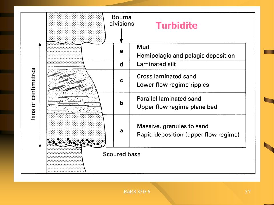 Turbidite EaES 350-6