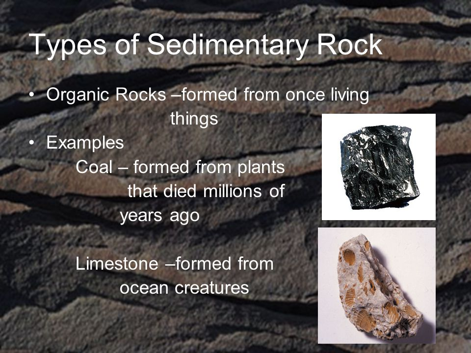Types of Sedimentary Rock