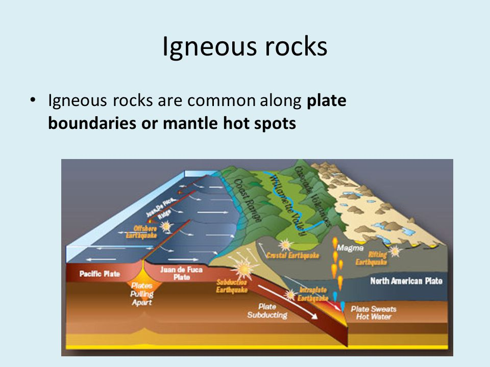Igneous rocks Igneous rocks are common along plate boundaries or mantle hot spots