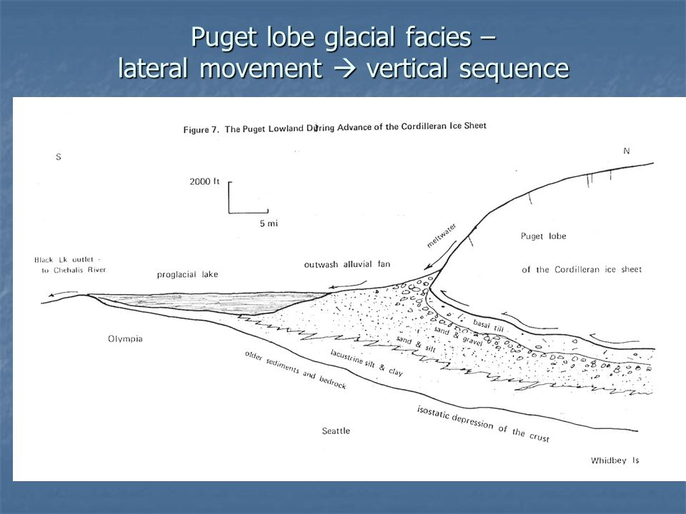 Puget lobe glacial facies – lateral movement  vertical sequence